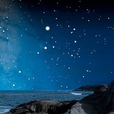 stellemarineworld2484f